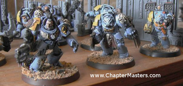 Wolf Guard, Wolf Guard Terminators, Space Wolve Wolf Guard, Space Wolf Wolf Guard, Wolfgurad, 2009 Wolf Guard Terminators, Plastic Wolf Guard, Plastic Wolf Gaurd Terminators